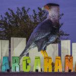 Carcarañá